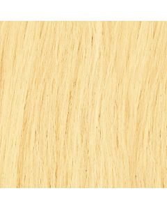 Di Biase Hair Tape Extensions - 50cm - #20