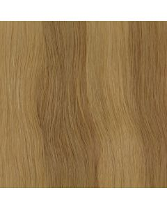 Balmain Tape Extensions - natural straight - 40cm - 2 tapes - #10G