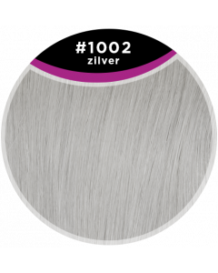 Great Hair Extensions Tape Extensions - natural straight #1002 40cm